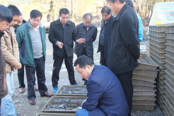 省公司执行董事谢辉一行在汉中页岩气项目检查指导工作